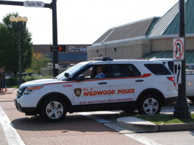 Wildwood Police: Cars Racing; Marbles Through a Window; Dog-on-Dog ...