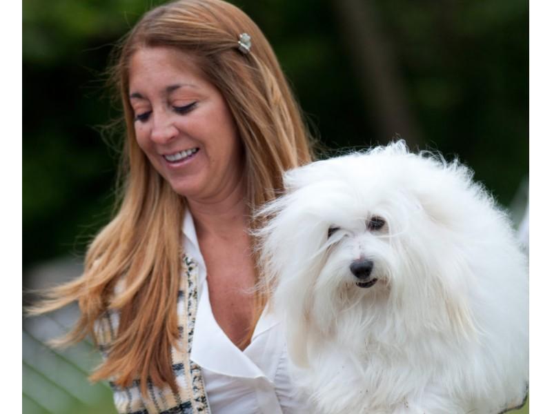 Dog Show In East Windsor Nj