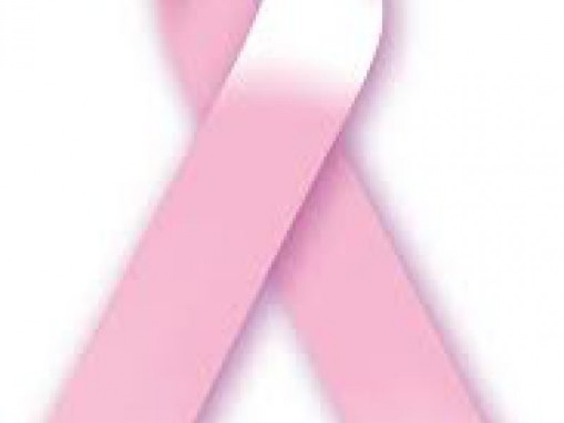Faces Plus Salon Pink Hair Extensions for Breast Cancer ...