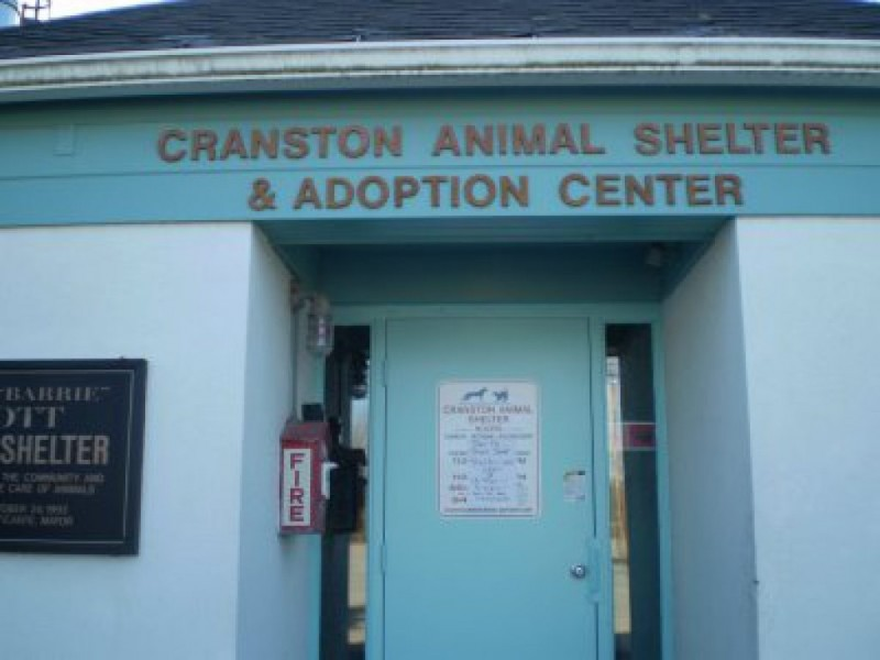 Cranston animal shelter lands 3 500 donation from pet store cranston ri patch for Garden city stores ri