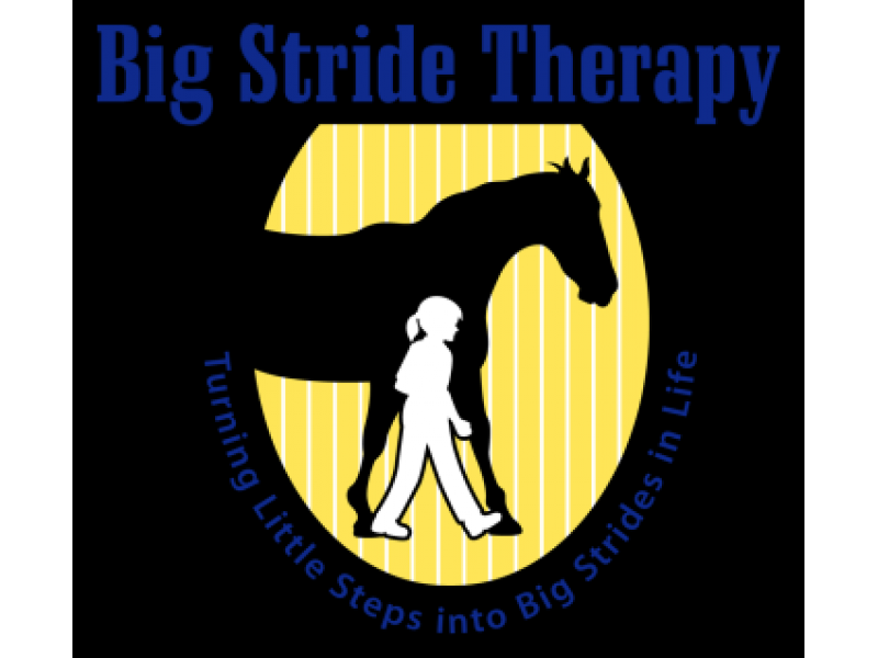 New Pediatric Hippotherapy Business Opens in Johns Creek | Roswell ...