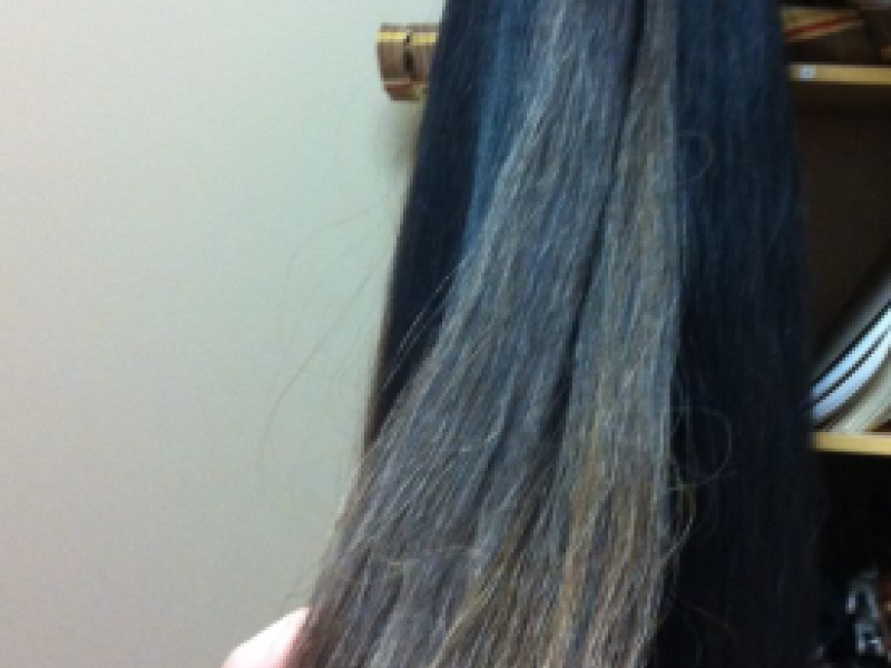 Horse Hair Extensions Intruder At School And Flea Market For A