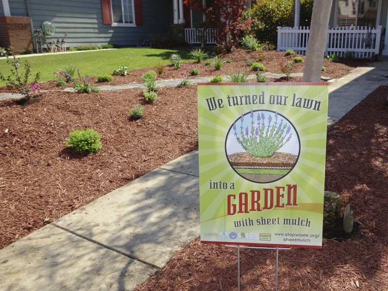 Lawn to Garden Party - learn how to convert your lawn without ripping it out! | Alameda, CA Patch