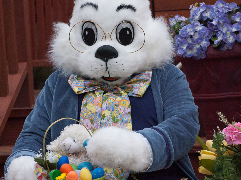 Where Can I Take Photos With the Easter Bunny? | Grayslake ...