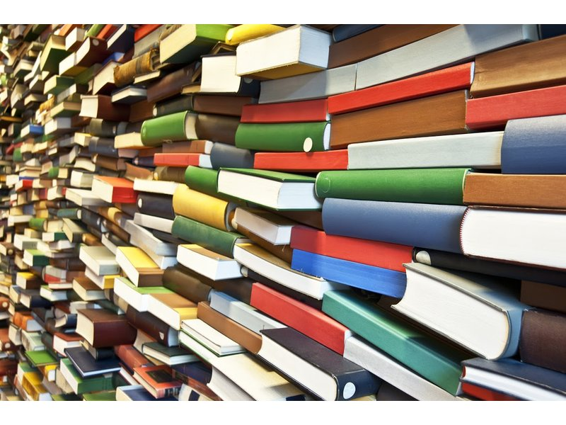 Loudoun Library Foundation Collecting Items For 2015 Book Sale