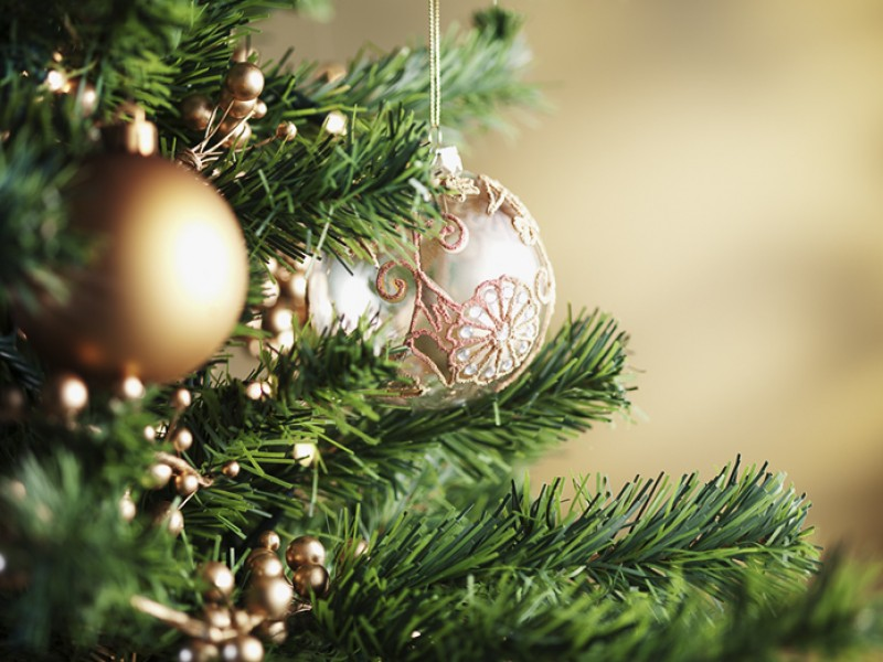 Christmas Tree and Decoration Recycling in Fairfax | Fairfax City ...