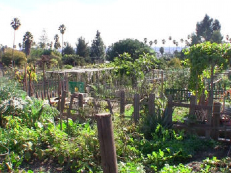 Improvements to Wattles Garden Park Dedicated | Hollywood, CA Patch