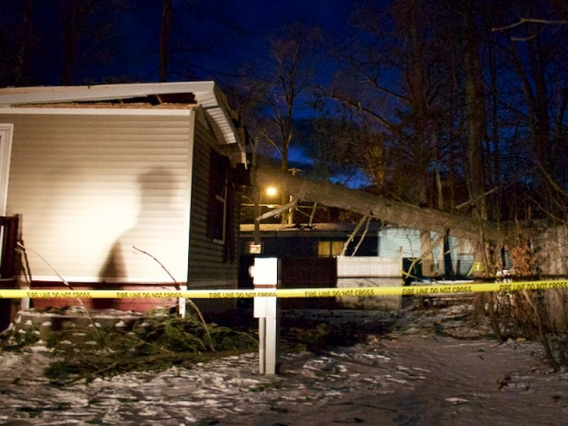 Pine Tree Crashes On Concord Mobile Home Concord Nh Patch