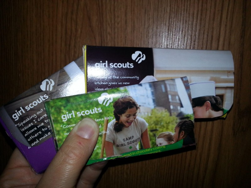 pinteresting things   girl scout cookie box crafts land