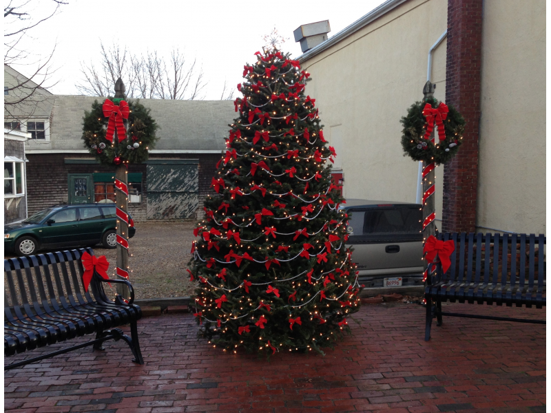 Where to Recycle a Christmas Tree on Martha\'s Vineyard | Martha\'s ...