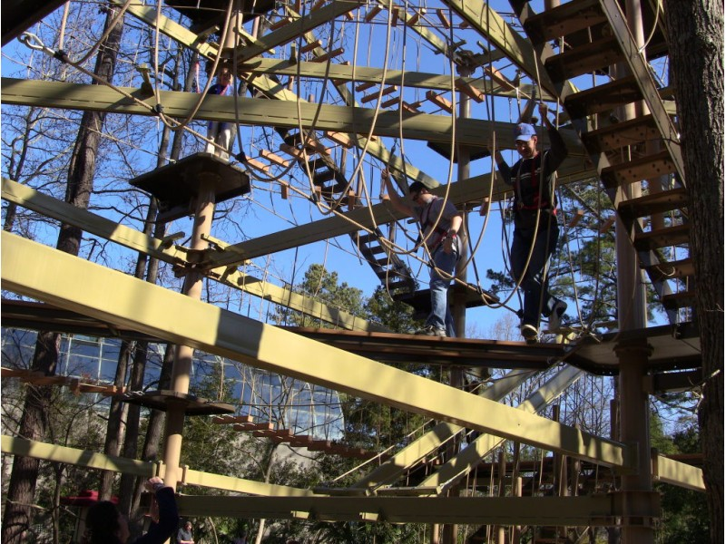Riverbanks Zoo Offers Sky High Fun With Ropes Course