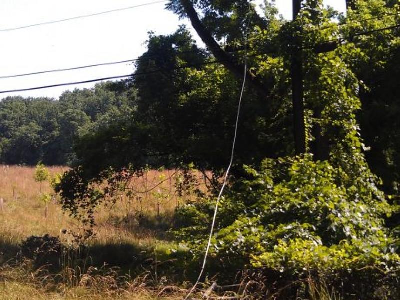 photos  storm damage in elkridge