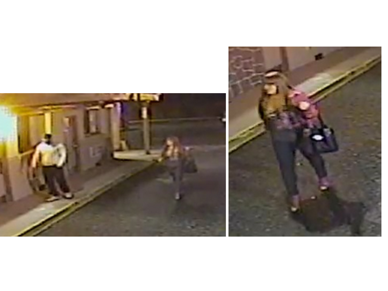 Reward Offered Police Seek Help To Find Pair Who Robbed Woman At Lindenhurst Motel