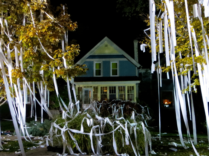 The Most Epic Toilet Papered Houses 1570166459