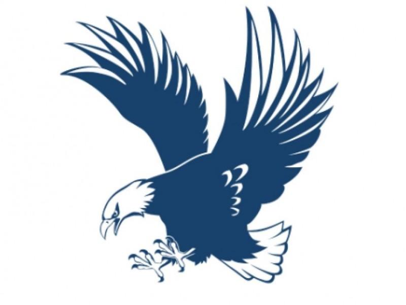 Eagle Sports Roundup: Hoops Teams Win | Fredericksburg, VA Patch