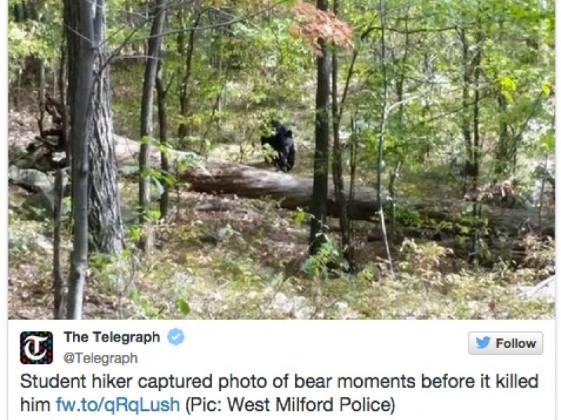Rutgers Student Captured Photo Of Bear Just Before Fatal Attack - Guy captures first person video of the moment a bear attacks him