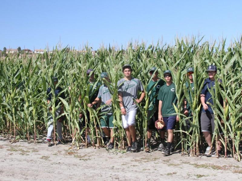 Annual Corn Maze Pumpkin Patch Amp Harvest Festival