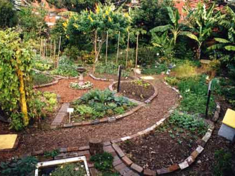 Altadena Garden Designers to Teach 'Create a Sustainable Oasis'