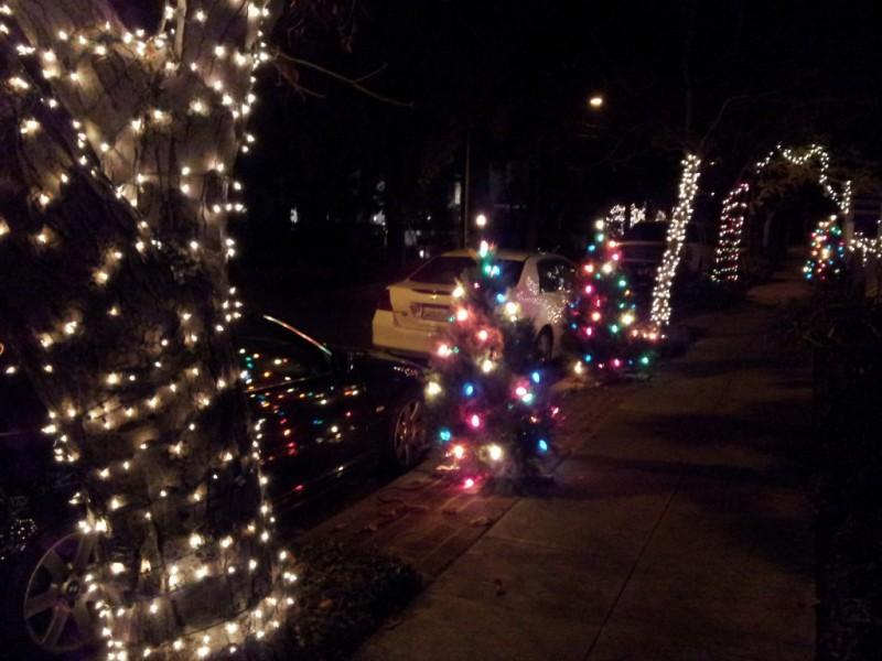 - Christmas Tree Lane Is Spreading Palo Alto, CA Patch