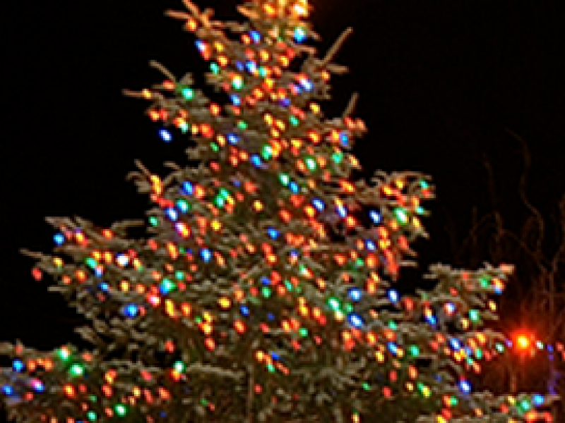Don't Miss: Tree Lighting Ceremony Dec. 5