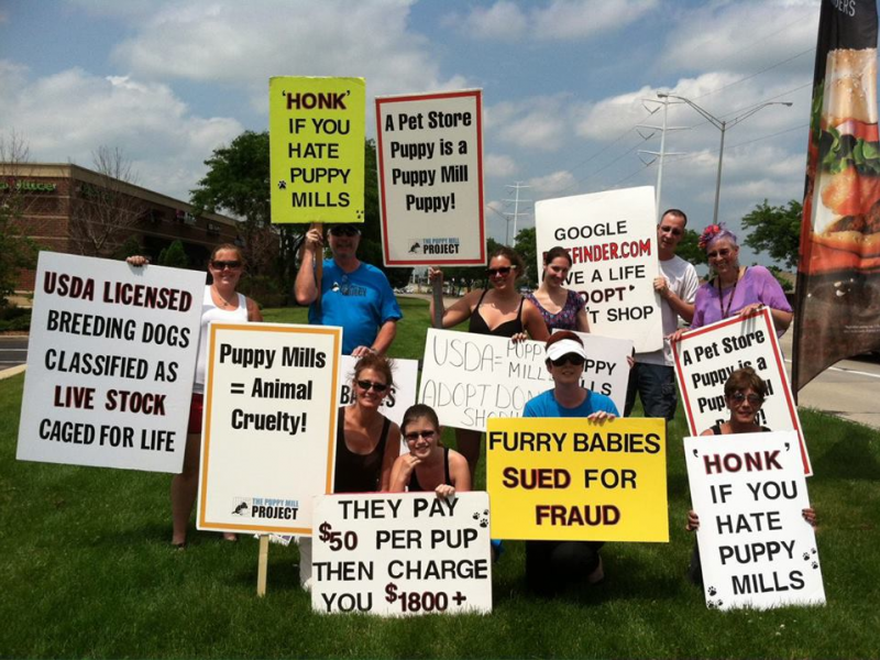 The Puppy Mill Project Plans Saturday Protest at Stratford