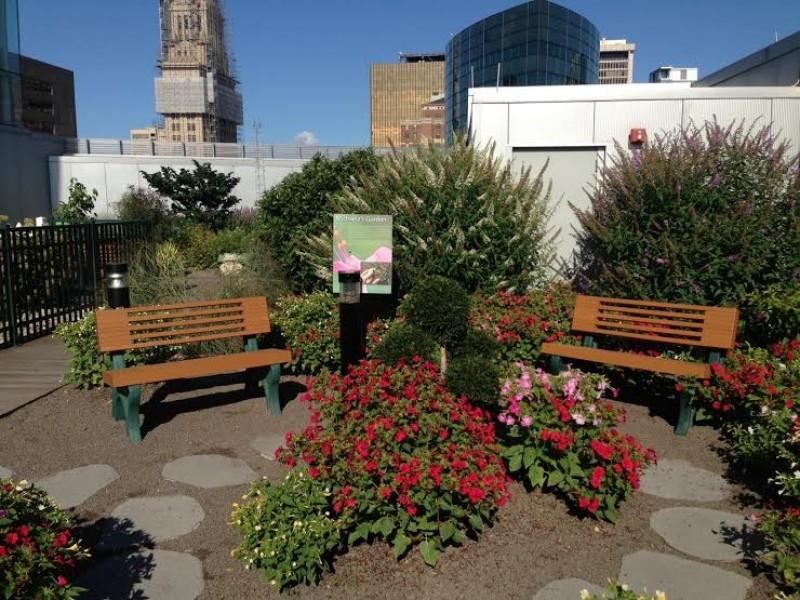 ... Science Centeru0027s Rooftop Garden Opens With Family Gardening Weekend  ...