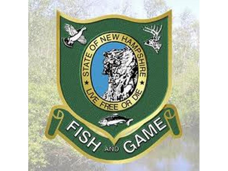 2014 new hampshire fishing and hunting licenses available | nashua