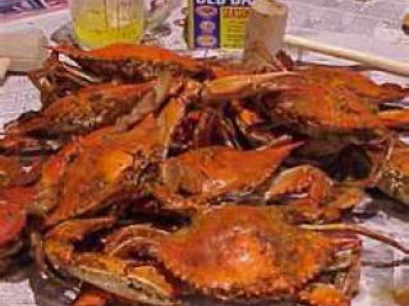 Best Seafood Restaurants In Anne Arundel County