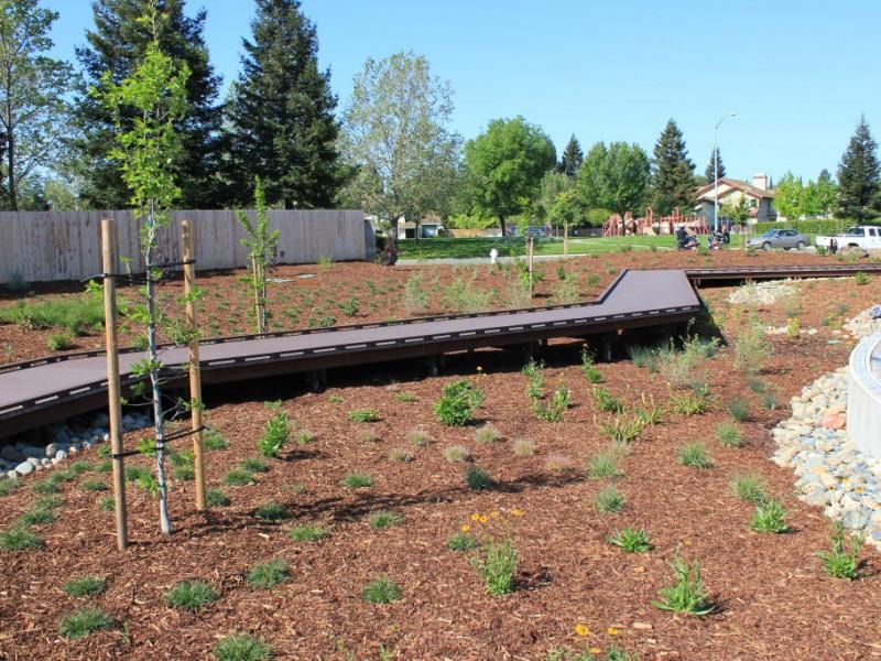 Photos New Elk Grove Rain Garden Plaza Elk Grove Ca Patch
