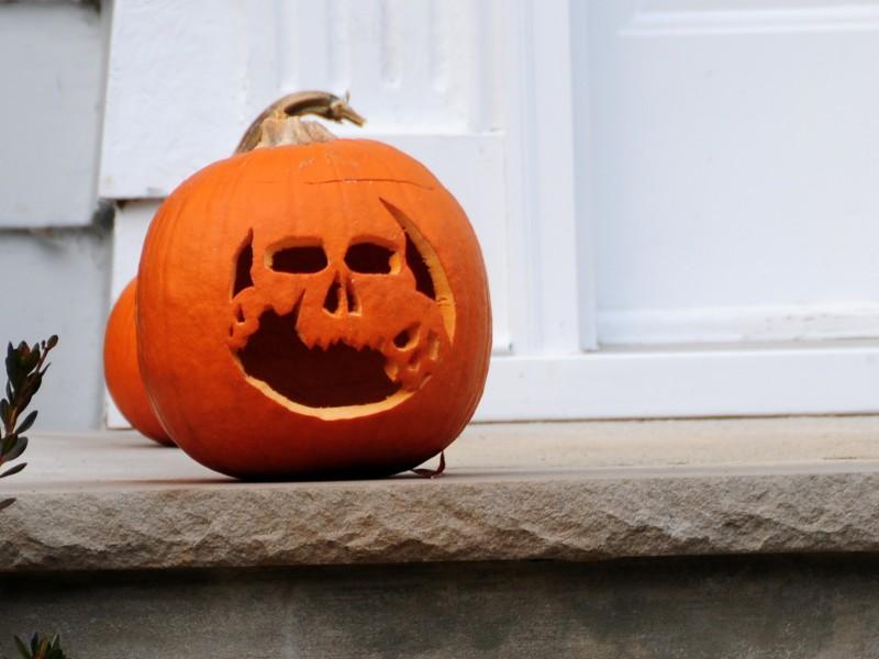 Pumpkin Carving Patterns To Impress The Neighborhood Los