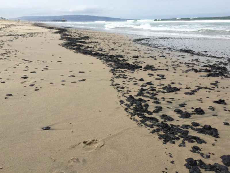 Tar Globs Are Back In Manhattan Beach