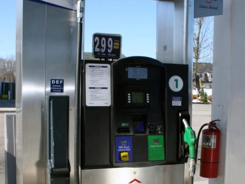 Fueling the teen machine — img 9