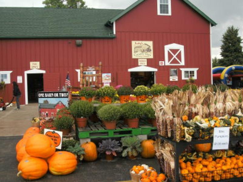 Dekalb county's apple orchards and pumpkin farms | dekalb county.