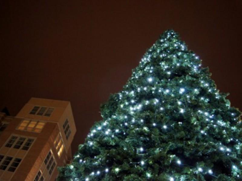 Des Plaines on YouTube: Christmas Lights | Des Plaines, IL Patch