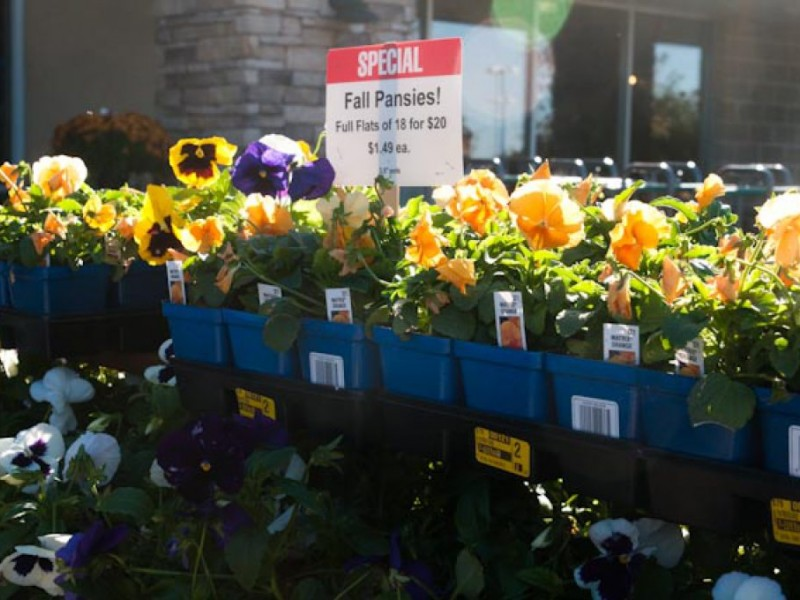 ... Business Profile: Earl May Nursery And Garden Center 0 ...