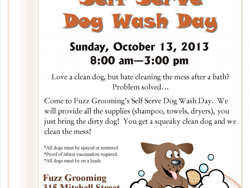 Self Serve Dog Wash Day | Groton, CT Patch