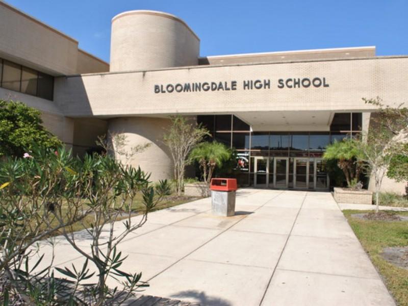 Bloomingdale High School Bulls