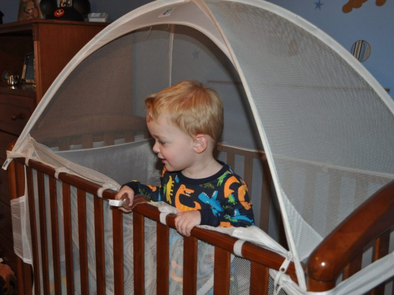 ... UPDATE Crib Tent May Be Dangerous-0 ...  sc 1 st  Patch & UPDATE: Crib Tent May Be Dangerous | Perry Hall MD Patch