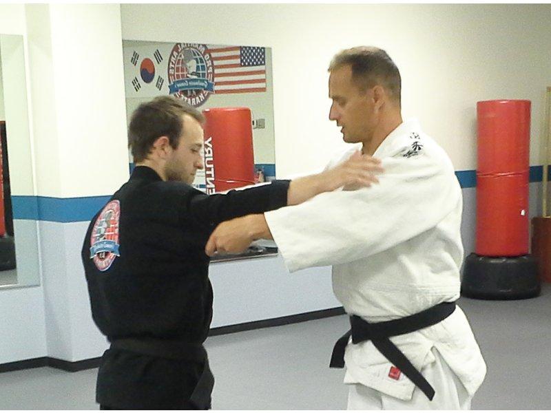 fist marshal fighting Michigan teens arts