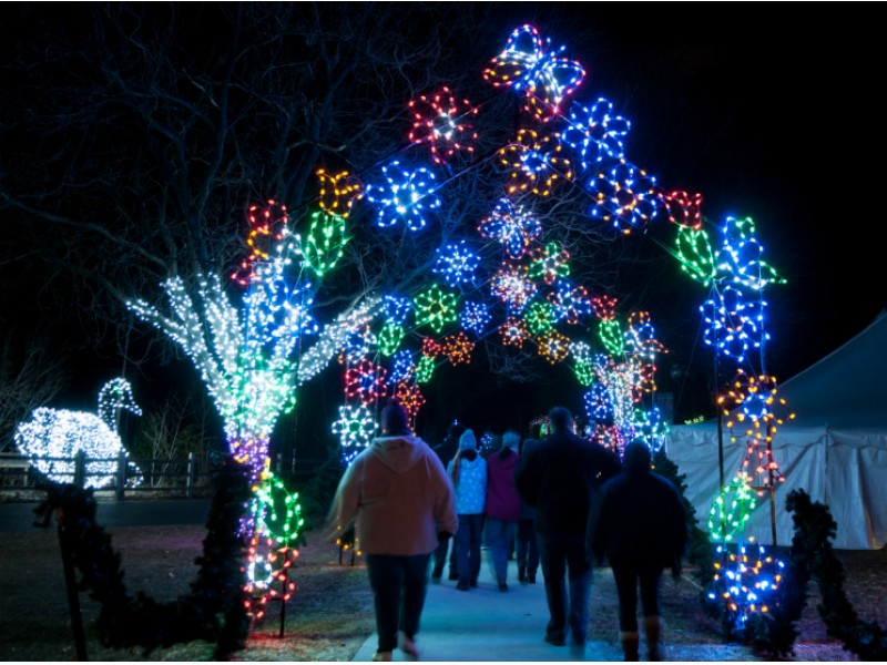 detroit zoo honors unused wild lights tickets dec 30 31 royal oak mi patch - Christmas Light Show Michigan