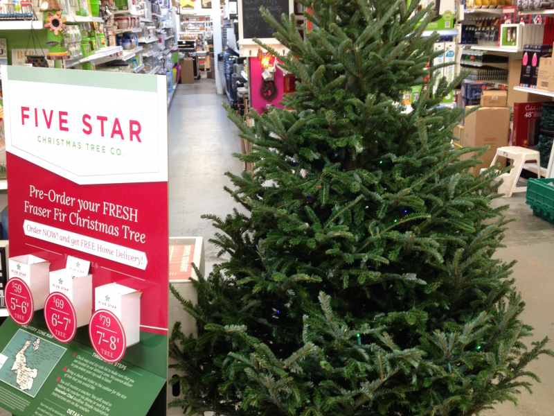 Hassett Ace Hardware Offers Free Christmas Tree Delivery Half