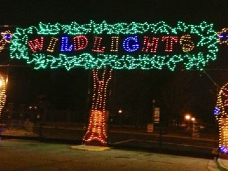 Detroit Zoo to Collect Food Donations During Wild Lights - Detroit Zoo To Collect Food Donations During Wild Lights Royal Oak
