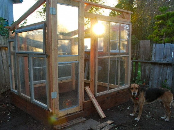 How To Build A Greenhouse From Old Windows