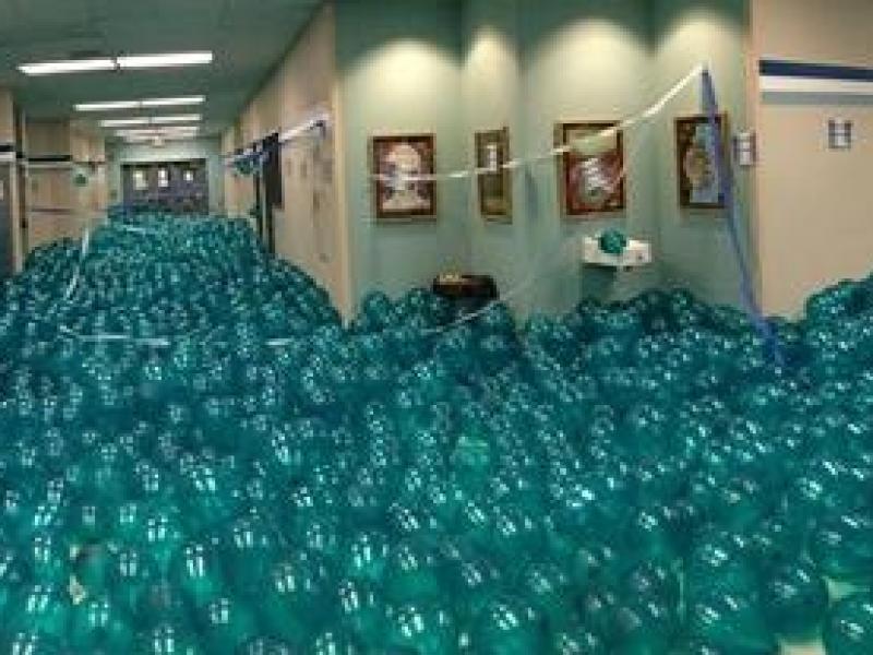 Gig Harbor Seniors Fill Hallway With 12 000 Balloons Gig