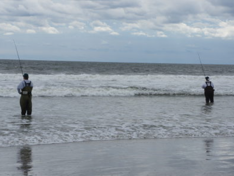 Governor S Fishing Tourney On Tap Sunday At Island Beach State Park