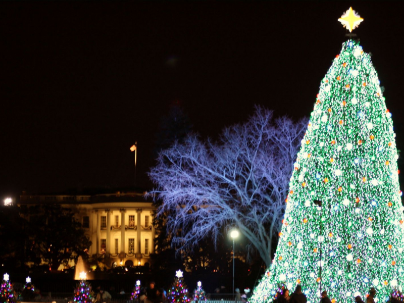How to Get Tickets for the National Christmas Tree Lighting 2013 ...