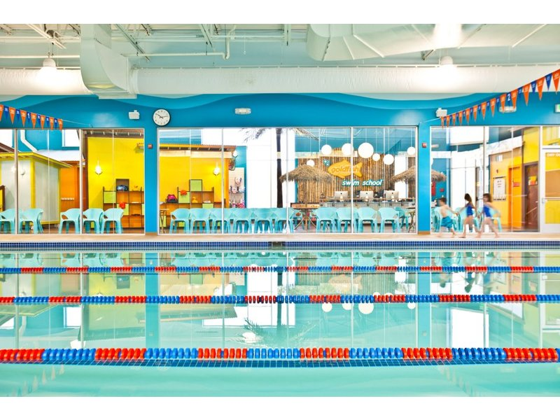 Making A Splash Goldfish Swim School To Open Soon In Reston