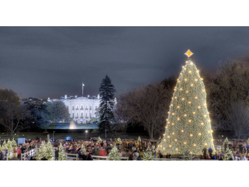 ... Reese Witherspoon to Host 2015 National Christmas Tree Lighting-0 ...  sc 1 st  Patch & Reese Witherspoon to Host 2015 National Christmas Tree Lighting ...