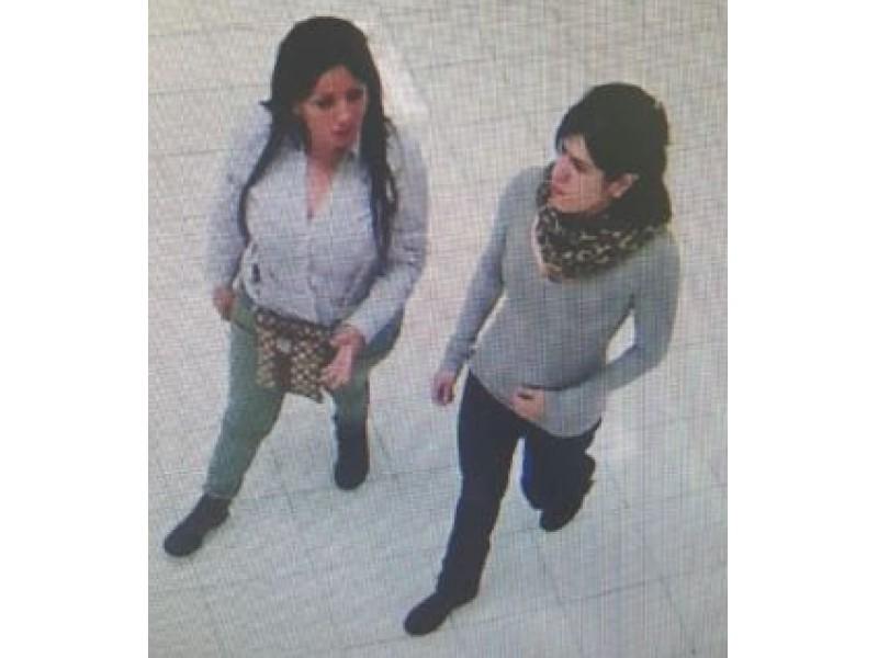 2 Women Wanted In Customer Theft At Burlington Coat Factory Police Falls Church Va Patch