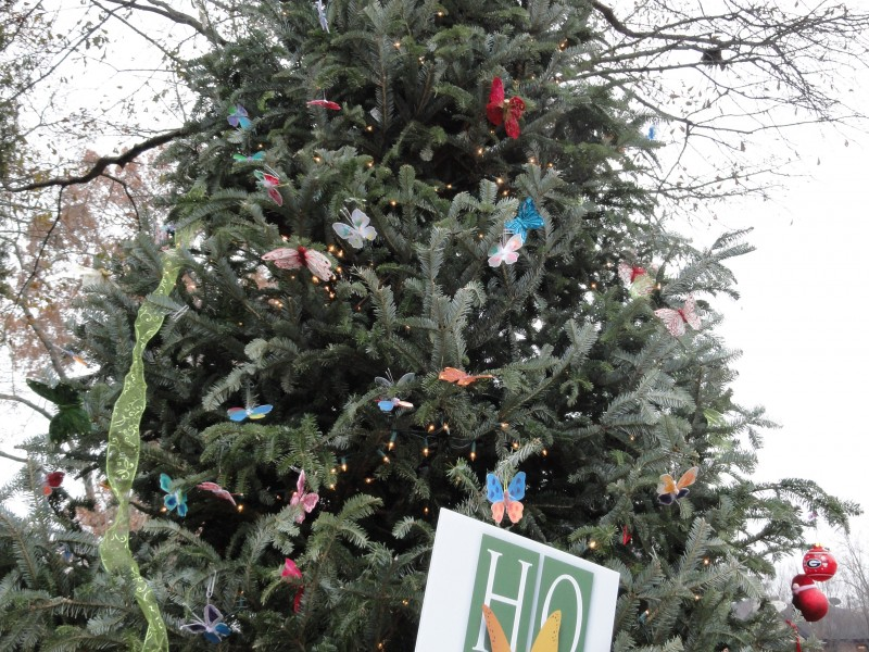 Canton Street Christmas Tree Symbolizes Hope Roswell Ga Patch